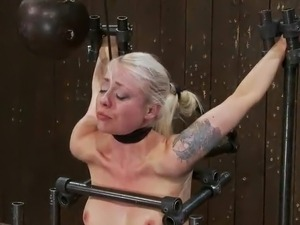 amateur bondage video gallery