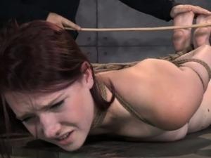 forced sex bdsm video