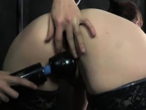curved anal butt plug