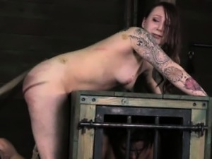 free exotic shemale bdsm movies