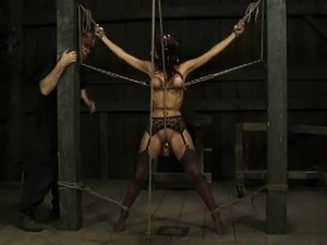 free shemale bdsm domination movies