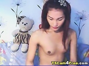 asian ladyboys vids