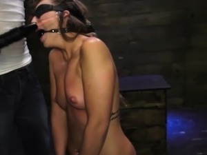 shemale bdsm video gallery