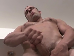 hot bear movies solo cumshots