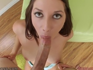 free shemale babe tube videos