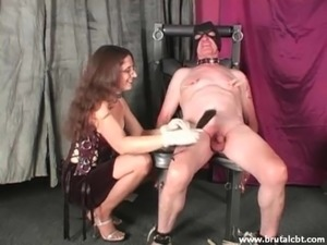 free pussy whipping pictures