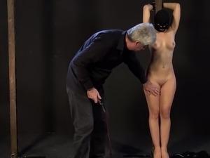 whipped ass bdsm videos
